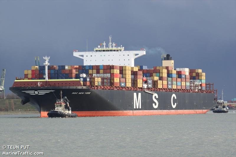 MSC_NEW_YORK